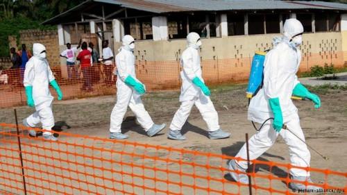Suero Zmapp tratamiento contra el Ébola