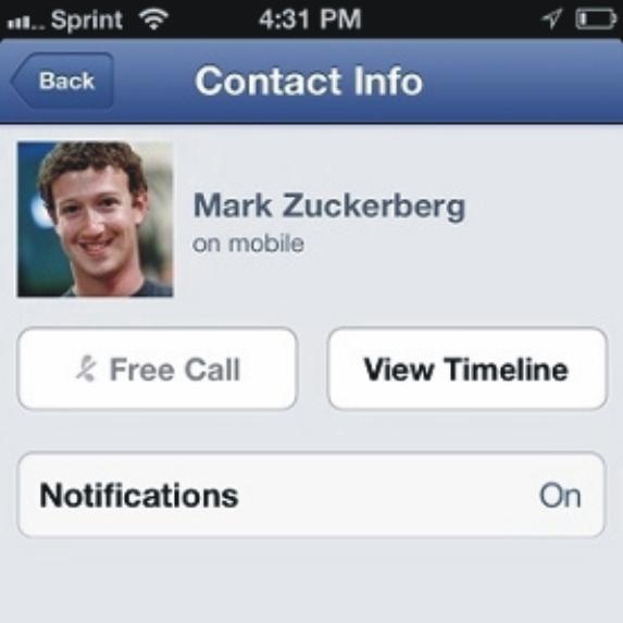 facebook-podria-deshacerse-de-skype-2